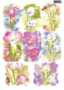 Craft UK Die Cut Toppers Line 2069 - Calla Lily