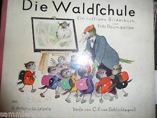 55 Bilderbuch Fritz Baumgarten Die Waldschule, Ein lustiges Bilderbuch 6.Auflage