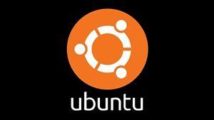 "Ubuntu Linux 20.4 ""Cinnamon"" Live or Installable 32GB USB"