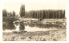 c1940 Farm Scene Near Caldwell, Idaho Real Photo Postcard/Rppc