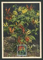 AOF MK 1958 FLORA RUHMESKRONE GLORIOSA SUPERBA CARTE MAXIMUM CARD MC CM d5697