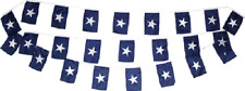 30ft String Flag Set of 20 Bonnie Blue 12x18 Bunting Flag Banner Flags