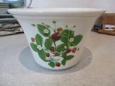 Portmerion Summer Strawberry Plant Pot Holder 19.5 x 13 Cm Tall VGC