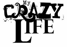 Quotes # 57 - 8 x 10 - T Shirt Iron On Transfer - My Crazy Life