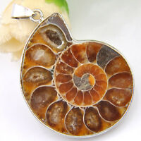 Vintage Genuine Unique Ammonite Fossil Gemstone Silver Necklace Pendant 2 Inch