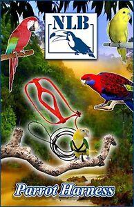 Pettorina Guinzaglio e Imbracatura per Pappagalli, Uccelli - Parrot Harness NLB