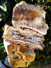New listing Three (3) Top Quality Graveyard Point Plume Agate Slabs Red Orange Blue 9.8Oz!