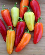 Santa Fe Pepper Seeds, Heirloom Mild Pepper Seeds, Mild Peppers, Non-Gmo, 50ct