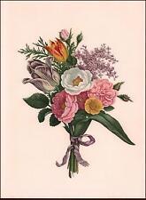 BOUQUET OF FLOWERS, Botanical by JOHN HENRY HOPKINS, vintage print  1948