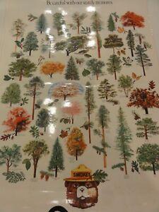 Vintage 1980s Educational SMOKEY THE BEAR Poster - STATELY TREASURES