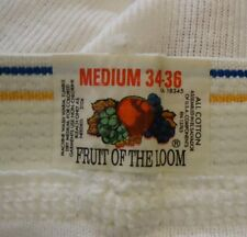 Nos Vtg 90s Fruit Loom 100% White Cotton Briefs Blue Gold Stripe Band M 34/36