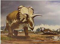 DINOSAUR ART Medusaceratops NEW Modern Russian Postcard
