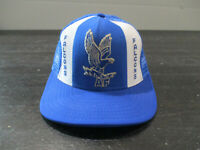 VINTAGE Air Force Falcons Hat Cap Snap Back Blue White Military Football Men 90s