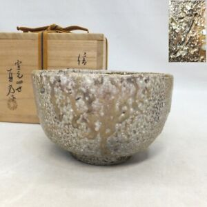 A778: Japanese wonderful tea bowl of SHIGARAKI stoneware by famous Naokata Ueda