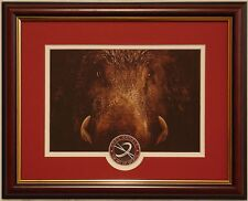 0e36cbf28 Arkansas Razorbacks football framed print by Greg Gamble
