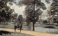Postcard OH Lima View in City Park Man on Horseback Posted 1910 Vintage Ohio PC