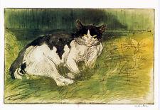 Steinlen•Old Black & White Cat in the Garden 1902•Sleeping•Vintage Art POSTCARD