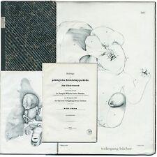 Barkow: Beiträge zur pathologischen Entwickelungsgeschichte, Große Lithos v 1859