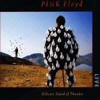 PINK FLOYD - DELICATE SOUND OF THUNDER - 2 X CD SET - COMFORTABLY NUMB +