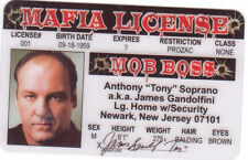 James Gandolfini of the Sopranos Tony Soprano collectors card Drivers License