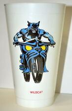 WILDCAT DC COMICS SUPER HEROES 7-11 CUP 1973 JSA