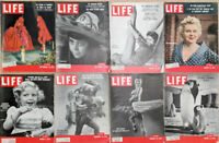 Lot of 16 1953 1954 LIFE - Terry Moore Stengel Diane Sinclair Penquin Crowley
