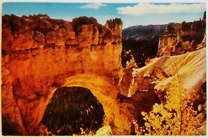 Natural Bridge Rim Road Bryce Canyon National Park Utah Postcard