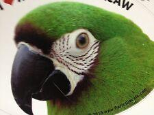 NEW! Severe Macaw Parrot Exotic Bird Vinyl Decal Bumper Sticker