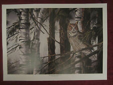 Great Horned Owl wildlife art print WOODLAND LOOKOUT Dean Johnson - Unsigned