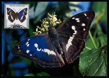 BRD MK 1991 SCHMETTERLING BUTTERFLY MAXIMUMKARTE CARTE MAXIMUM CARD MC CM /m475