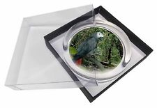 African Grey Parrot Glass Paperweight in Gift Box Christmas Present, AB-PA76PW