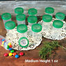 """12 Pill Bead Jars 2+"""" tall Screw Green Cap 1 ounce Favor Container #3812 USA New"""