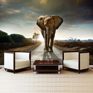 Vlies Fototapete XXL Tapete Poster 217656FW Elefant Tiere / Fauna