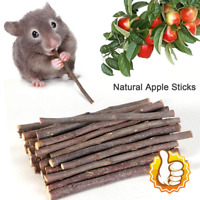 50g Apple Wood Chew Sticks Twigs for Small Pets Rabbit Hamster Guinea Pigs Toy
