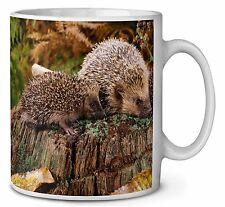 Mother and Baby Hedgehog Coffee/Tea Mug Christmas Stocking Filler Gift , AHE-5MG