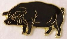 Hat Lapel Pin Scarf Clasp Animal Pig Black NEW