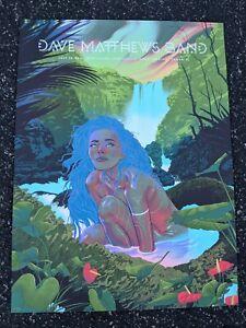 Dave Matthews Band Tampa Poster Print Florida