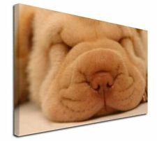 More details for cute shar-pei puppy dog x-large 30