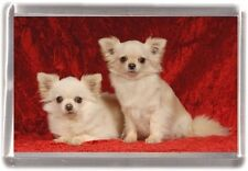 Chihuahua  Fridge Magnet Design No 15 by Starprint