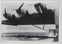 Im Schatten des Giganten. Orig-Pressephoto, von 1944
