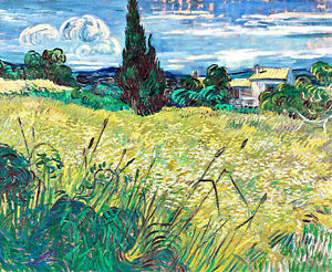 Green Field by Vincent van Gogh A2+ High Quality Art Print