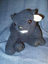 Retired 2001 3+ Boys/Girls TY Beanie Buddy CINDERS the Black Bear HardToFind EUC