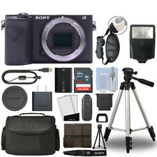 Sony Alpha a6600 Mirrorless 24.2MP 4K Digital Camera Body + 32GB Bundle