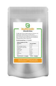 Chlorella Pulver | Powder | Alge | Algen | Mikroalgen | 100% rein