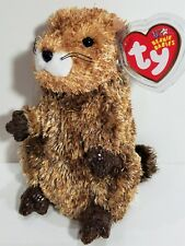 """TY Beanie Babies """"PUNXSUTAWN-e PHIL"""" Ty Store Excl GROUNDHOG ~ MWMTs! RETIRED!"""