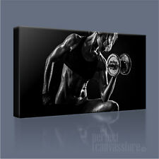 Bodybuild Classic gli allenamenti popolari MODERNO CANVAS PRINT PICTURE # 3 ARTE Williams