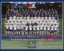 2018 NEW ENGLAND PATRIOTS SUPER BOWL 53 LIII CHAMPIONS 8X10 TEAM PHOTO PICTURE