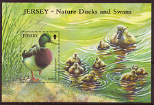 JERSEY 2004 NATURE DUCKS AND SWANS UNMOUNTED MINT, MNH