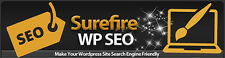 How To Make Your Wordpress Site Search Engine Friendly- Videos on 1 CD