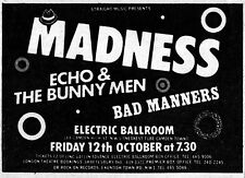 Madness w/ Echo & The Bunnymen '79 Melody Maker Concert Ad Repro London